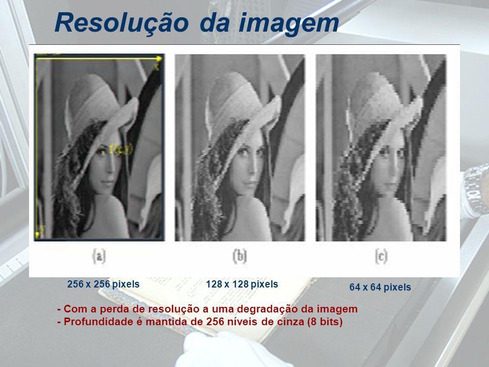 Resolução da imagem 256 x 256 pixels128 x 128 pixels 64 x 64 pixels - Com a perda de resolução a uma degradação da imagem - Profundidade é mantida de