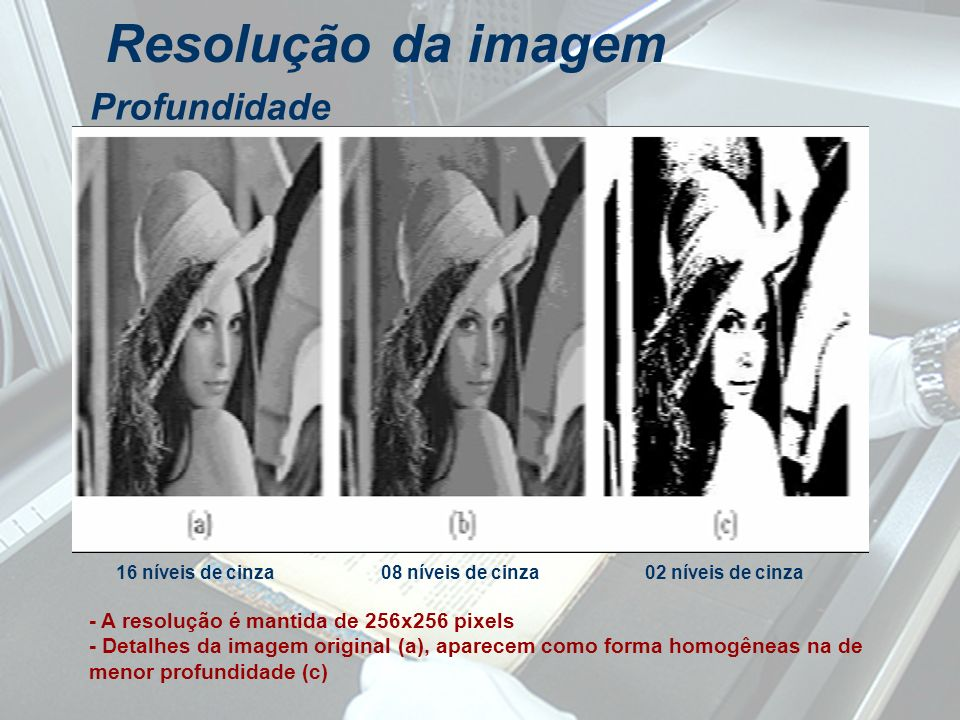 Profundidade 16 níveis de cinza08 níveis de cinza02 níveis de cinza - A resolução é mantida de 256x256 pixels - Detalhes da imagem original (a), apare