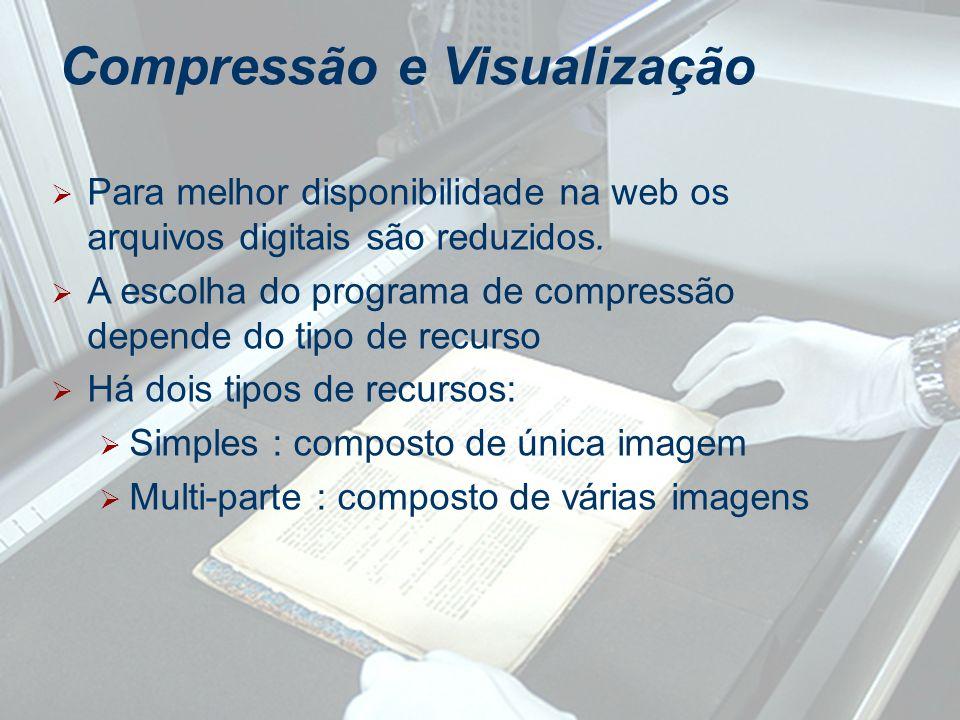 Para melhor disponibilidade na web os arquivos digitais são reduzidos. A escolha do programa de compressão depende do tipo de recurso Há dois tipos de