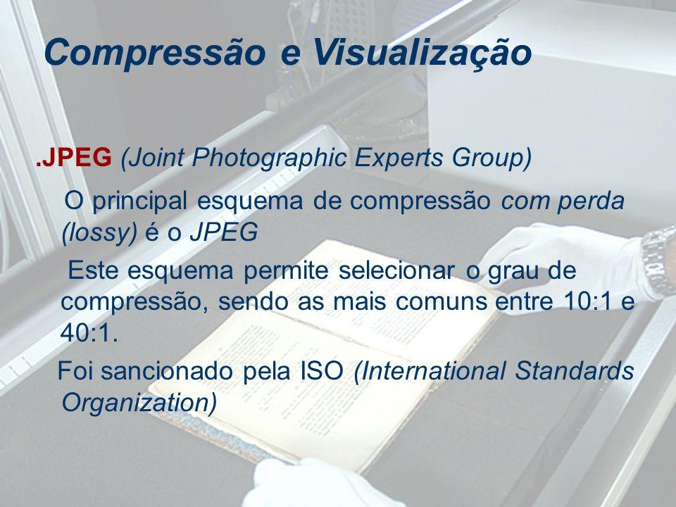 .JPEG (Joint Photographic Experts Group) O principal esquema de compressão com perda (lossy) é o JPEG Este esquema permite selecionar o grau de compre
