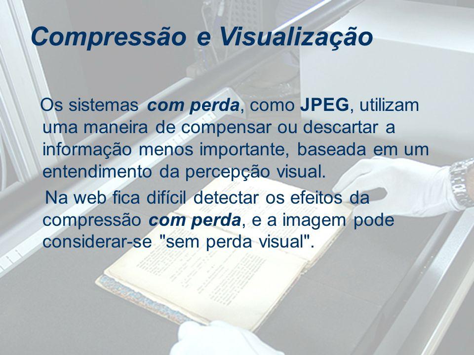 Os sistemas com perda, como JPEG, utilizam uma maneira de compensar ou descartar a informação menos importante, baseada em um entendimento da percepçã