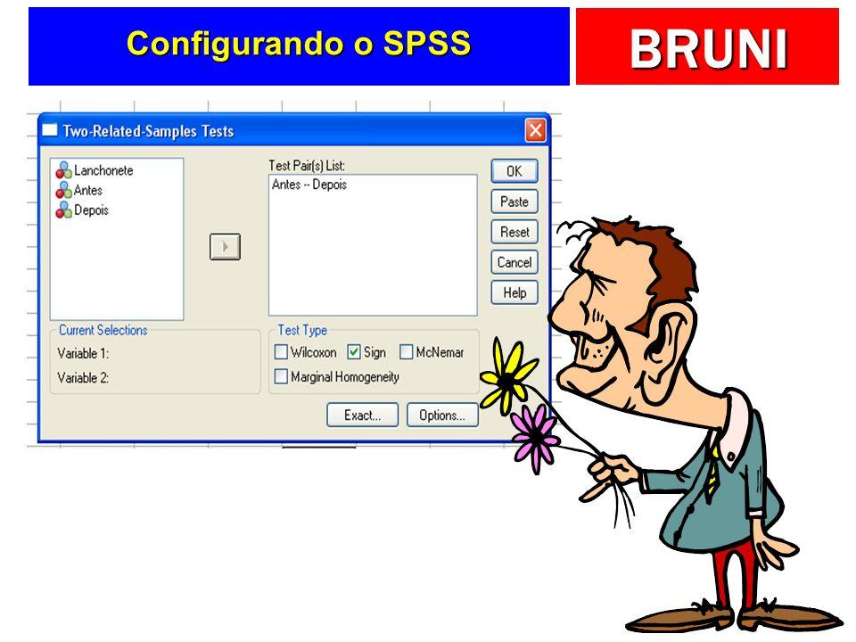 BRUNI Configurando o SPSS