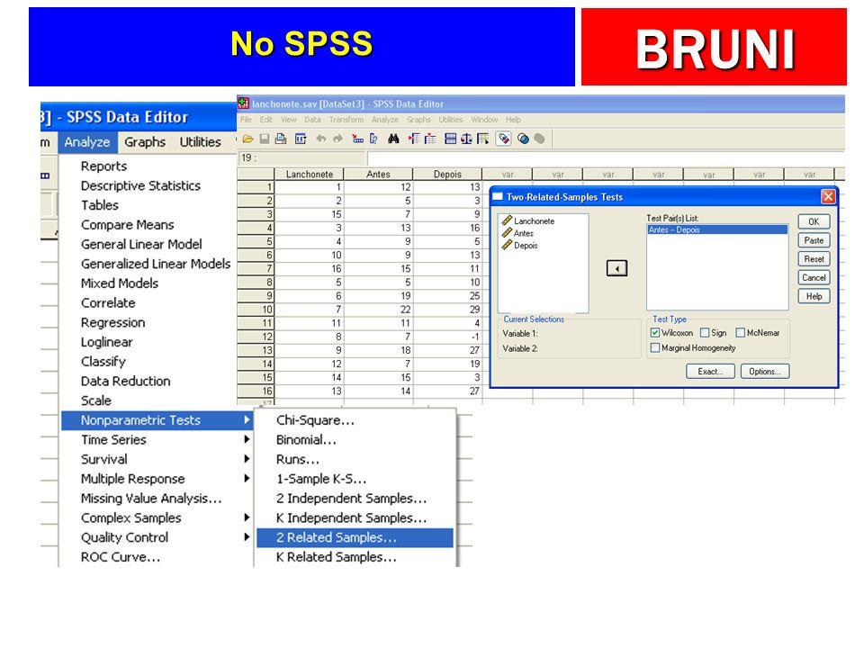 BRUNI No SPSS