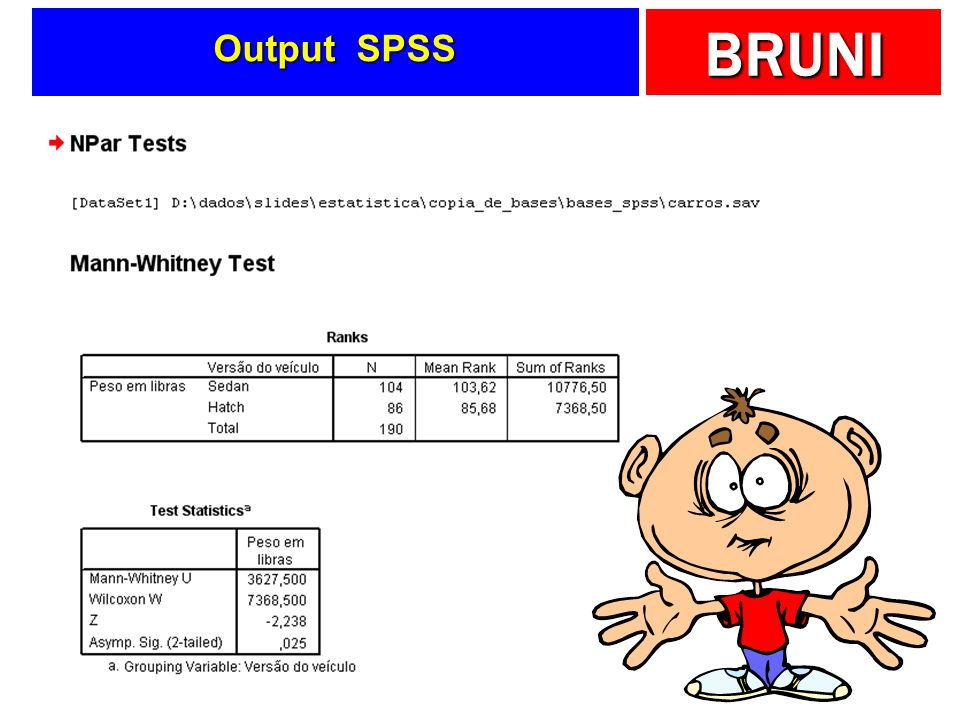 BRUNI Output SPSS