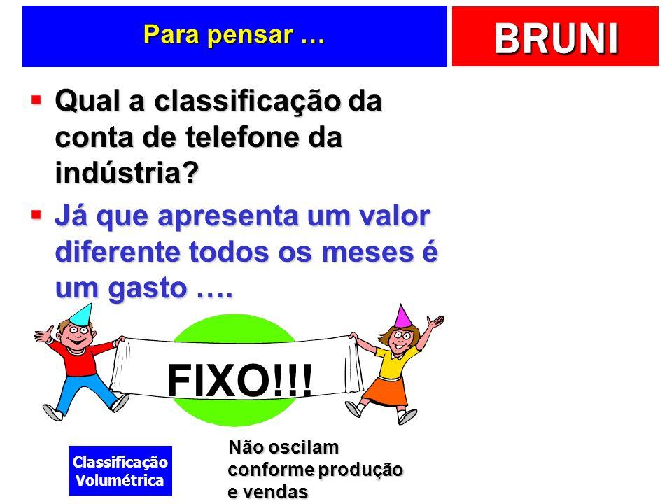BRUNI Um exemplo ilustrativo … Fábrica de Sorvetes Frio Delícia Ltda.