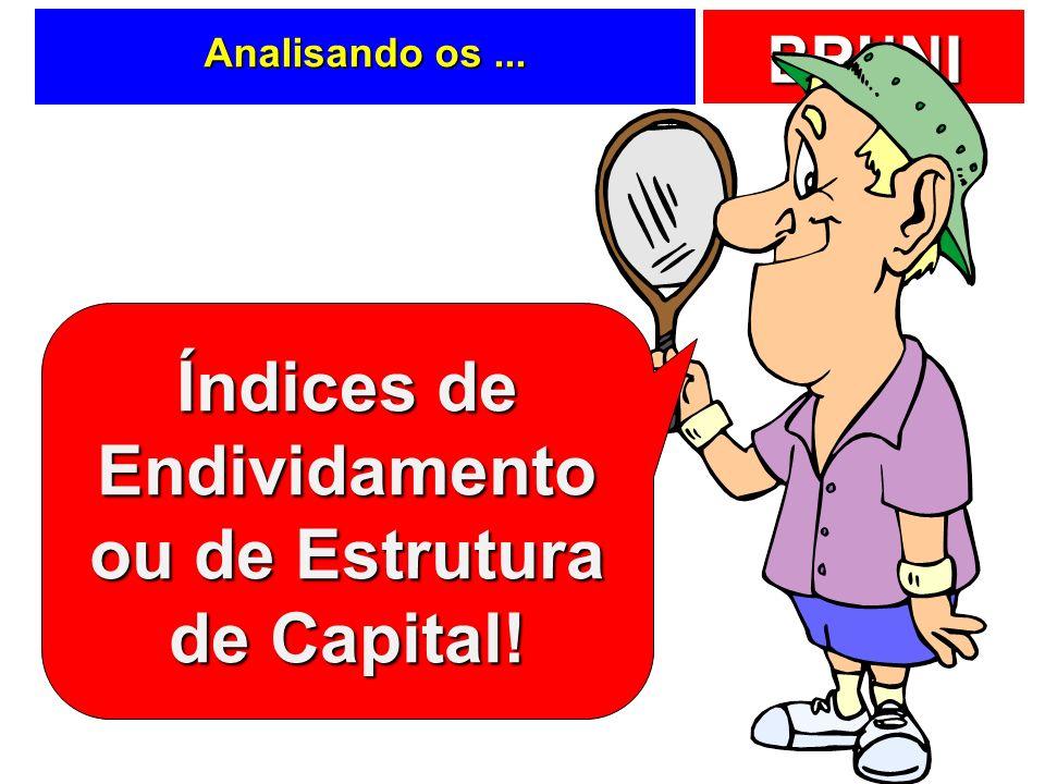 BRUNI Analisando os... Índices de Endividamento ou de Estrutura de Capital!