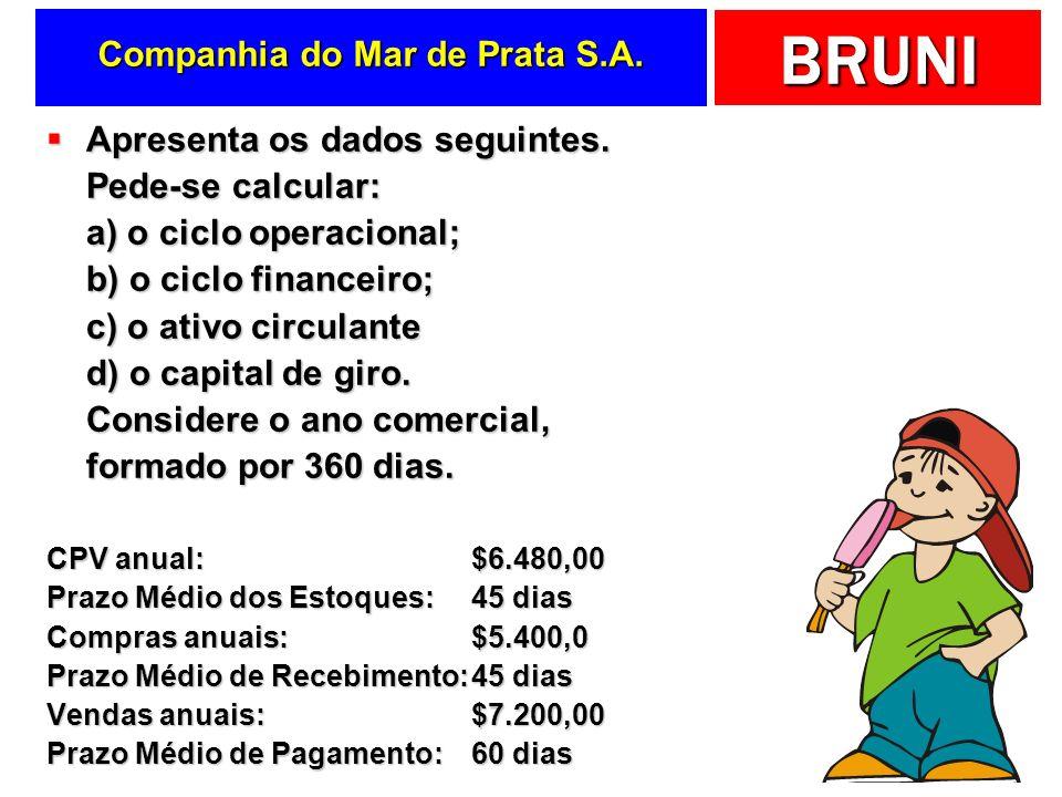 BRUNI Companhia do Mar de Prata S.A.Apresenta os dados seguintes.