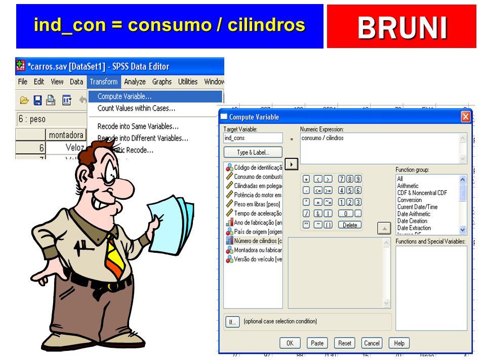 BRUNI ind_con = consumo / cilindros