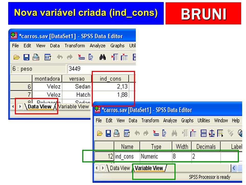 BRUNI Nova variável criada (ind_cons)