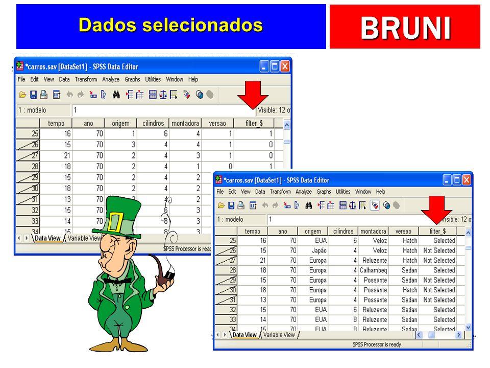 BRUNI Dados selecionados