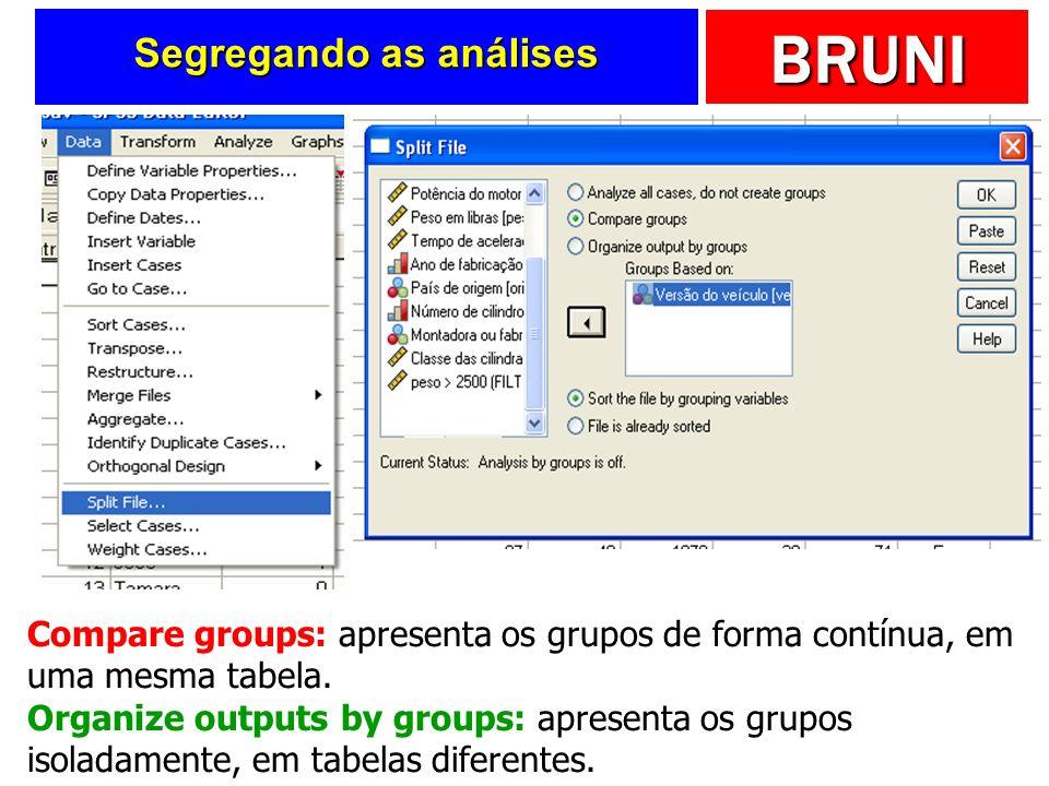 BRUNI Segregando as análises Compare groups: apresenta os grupos de forma contínua, em uma mesma tabela. Organize outputs by groups: apresenta os grup