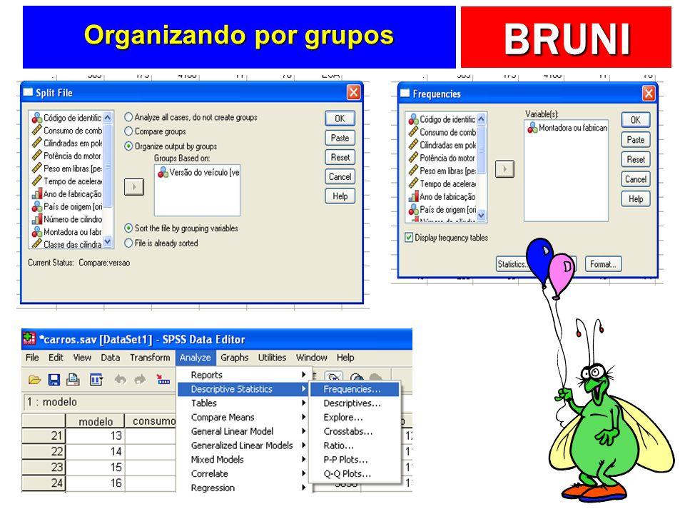 BRUNI Organizando por grupos