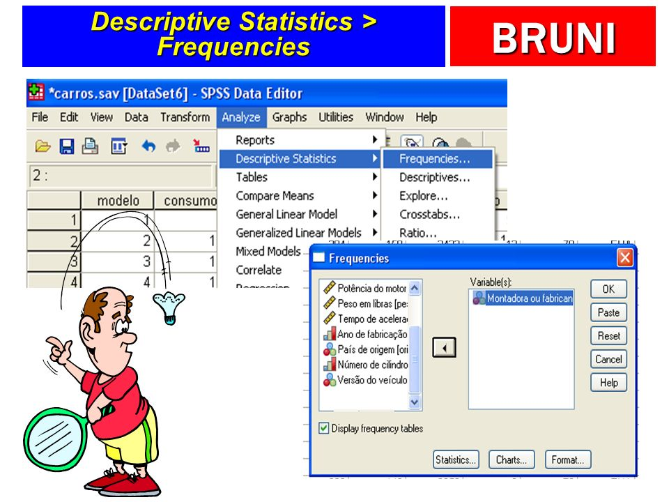 BRUNI Descriptive Statistics > Frequencies