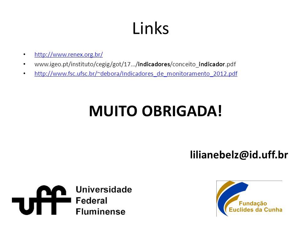 Links http://www.renex.org.br/ www.igeo.pt/instituto/cegig/got/17.../indicadores/conceito_indicador.pdf http://www.fsc.ufsc.br/~debora/Indicadores_de_monitoramento_2012.pdf MUITO OBRIGADA.