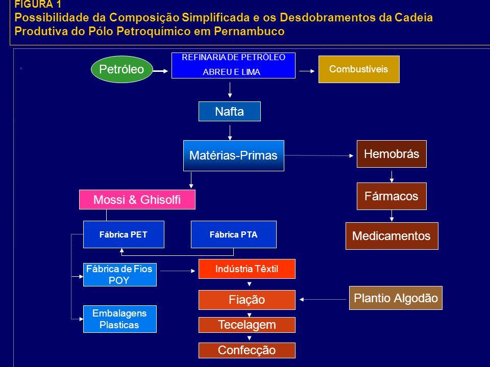 FIGURA 1 Possibilidade da Composição Simplificada e os Desdobramentos da Cadeia Produtiva do Pólo Petroquímico em Pernambuco.