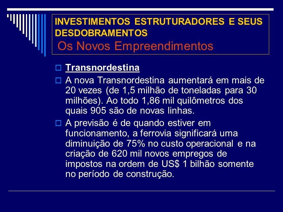 INVESTIMENTOS ESTRUTURADORES E SEUS DESDOBRAMENTOS Os Novos Empreendimentos Transnordestina A nova Transnordestina aumentará em mais de 20 vezes (de 1,5 milhão de toneladas para 30 milhões).
