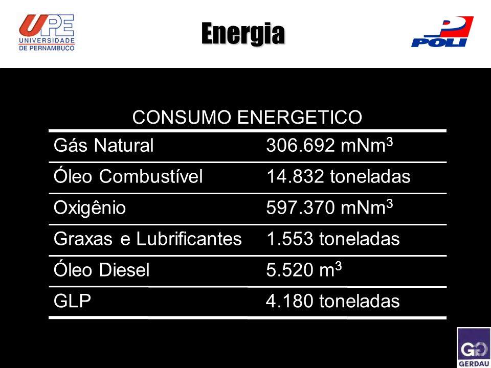 Energia CONSUMO ENERGETICO Gás Natural306.692 mNm 3 Óleo Combustível14.832 toneladas Oxigênio597.370 mNm 3 Graxas e Lubrificantes1.553 toneladas Óleo