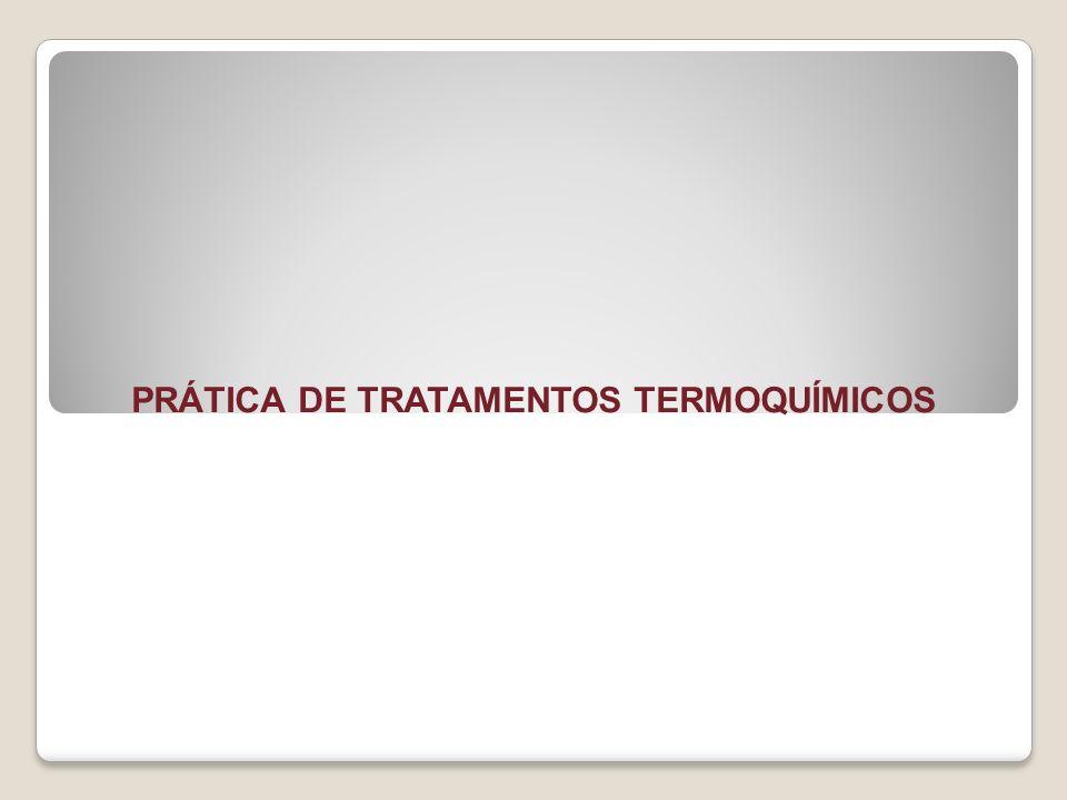 PRÁTICA DE TRATAMENTOS TERMOQUÍMICOS