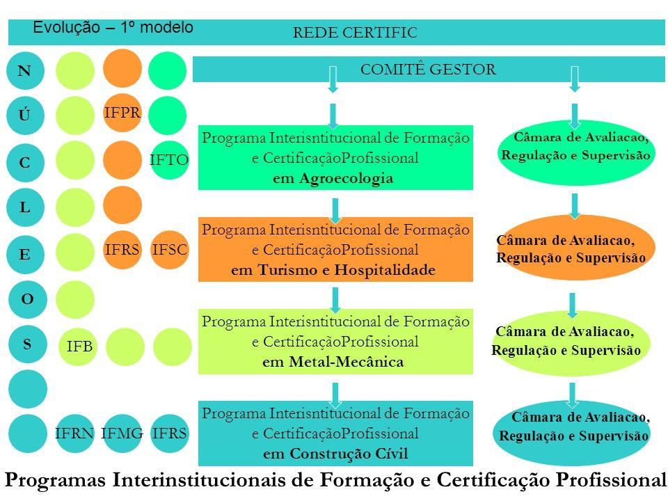 REDE CERTIFIC COMITÊ GESTOR Programa Interisntitucional de Formação e CertificaçãoProfissional em Agroecologia Programa Interisntitucional de Formação e CertificaçãoProfissional em Turismo e Hospitalidade Programa Interisntitucional de Formação e CertificaçãoProfissional em Metal-Mecânica Programa Interisntitucional de Formação e CertificaçãoProfissional em Construção Cívil E S N IFRN C IFTO IFSCIFRS IFB IFMGIFRS Ú L O IFPR Câmara de Avaliacao, Regulação e Supervisão Câmara de Avaliacao, Regulação e Supervisão Câmara de Avaliacao, Regulação e Supervisão Programas Interinstitucionais de Formação e Certificação Profissional Câmara de Avaliacao, Regulação e Supervisão Evolução – 1º modelo