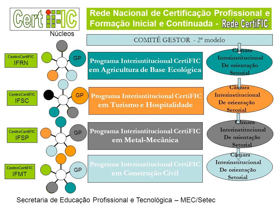 Rede Nacional de Certificação Profissional e Formação Inicial e Continuada - Secretaria de Educação Profissional e Tecnológica – MEC/Setec COMITÊ GEST