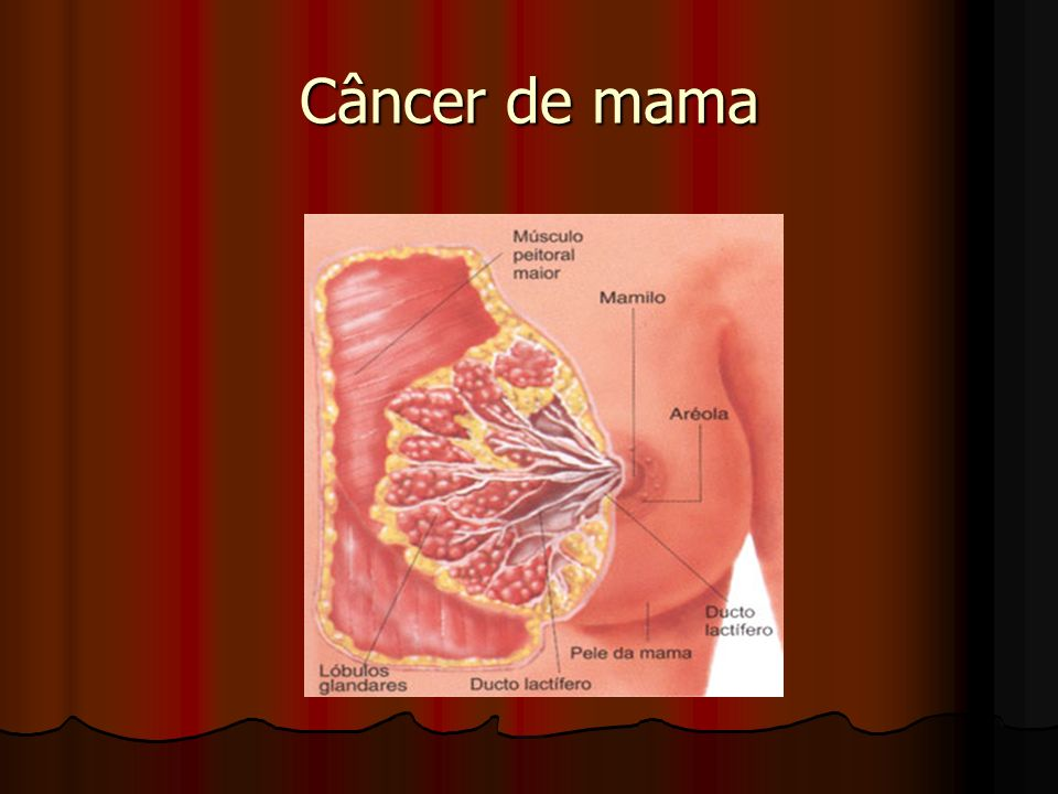 Tratamento Complementar Quimioterapia Quimioterapia Radioterapia Radioterapia