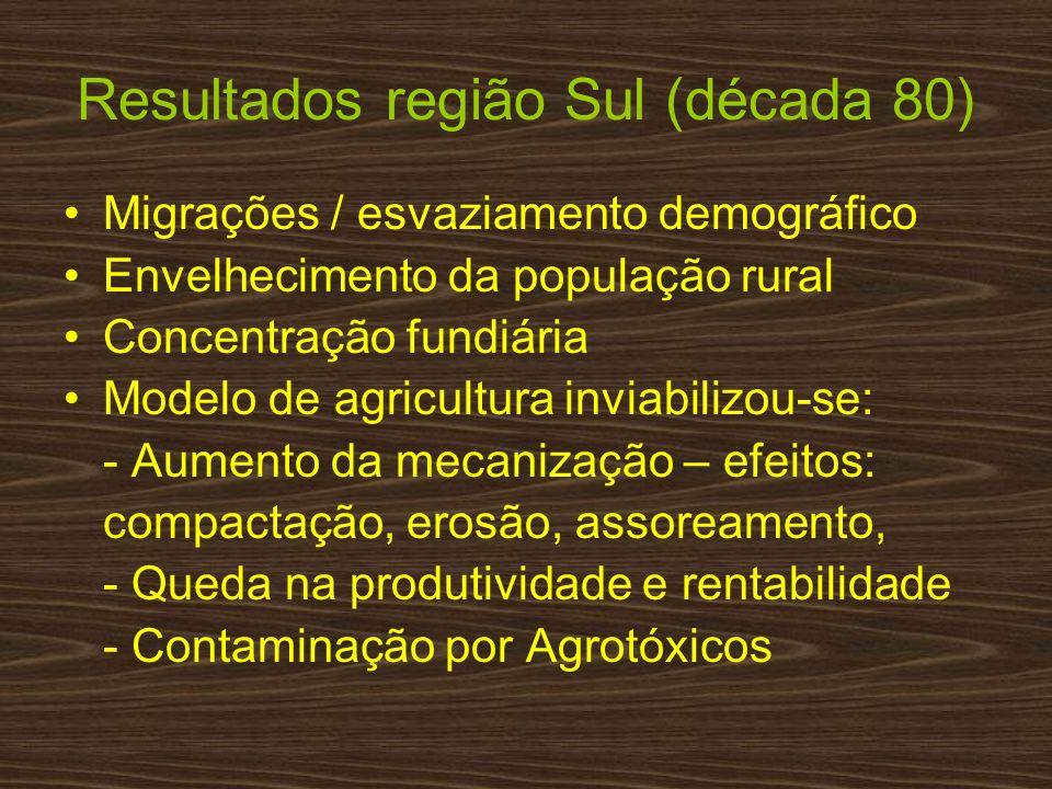 Migrações / esvaziamento demográfico Envelhecimento da população rural Concentração fundiária Modelo de agricultura inviabilizou-se: - Aumento da meca