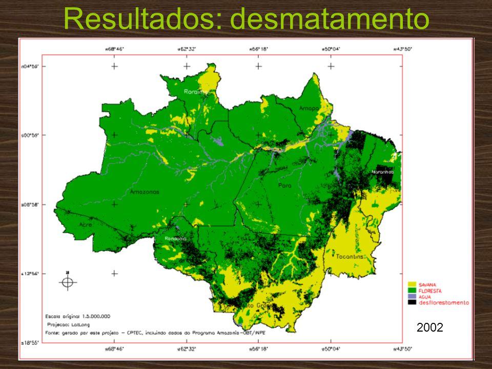 Resultados: desmatamento 2002