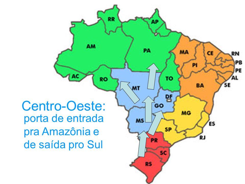 Centro-Oeste: porta de entrada pra Amazônia e de saída pro Sul