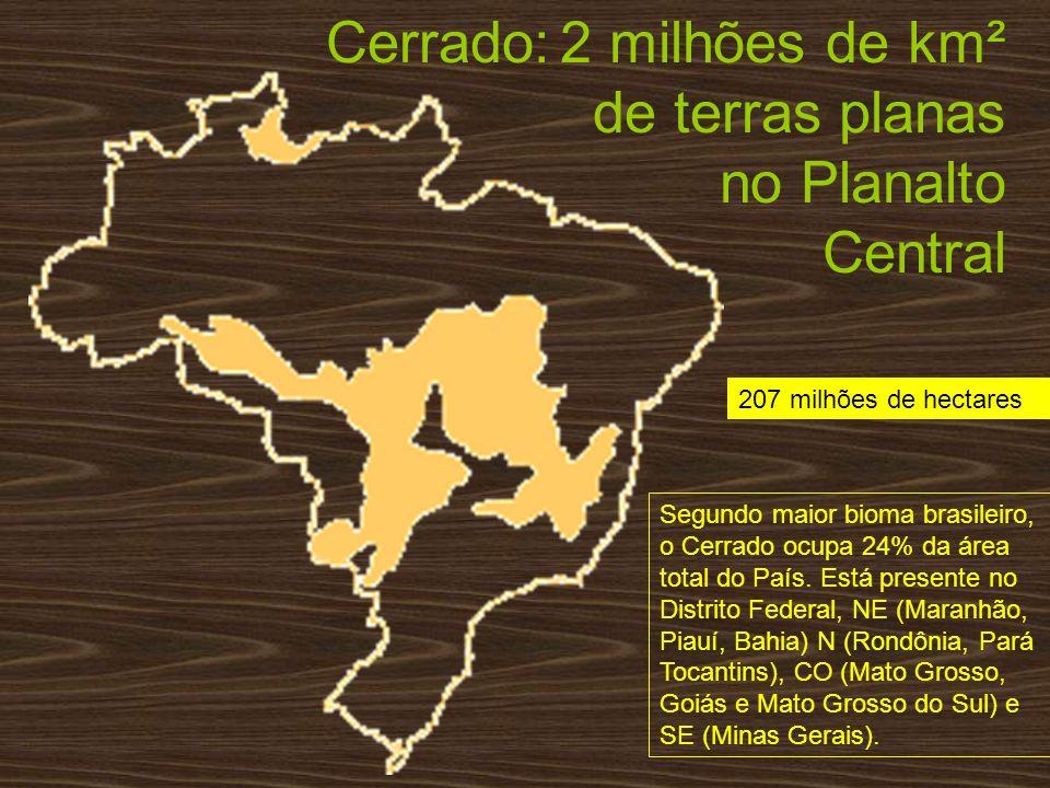 Cerrado: 2 milhões de km² de terras planas no Planalto Central 207 milhões de hectares Segundo maior bioma brasileiro, o Cerrado ocupa 24% da área tot