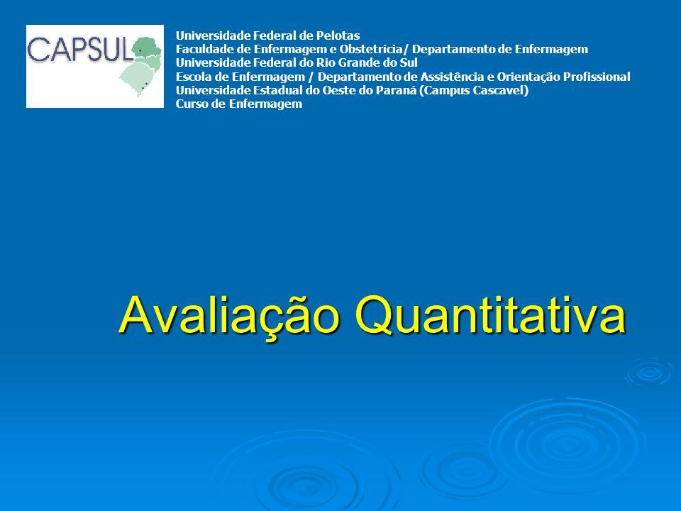 Avaliação Quantitativa Universidade Federal de Pelotas Faculdade de Enfermagem e Obstetrícia/ Departamento de Enfermagem Universidade Federal do Rio G