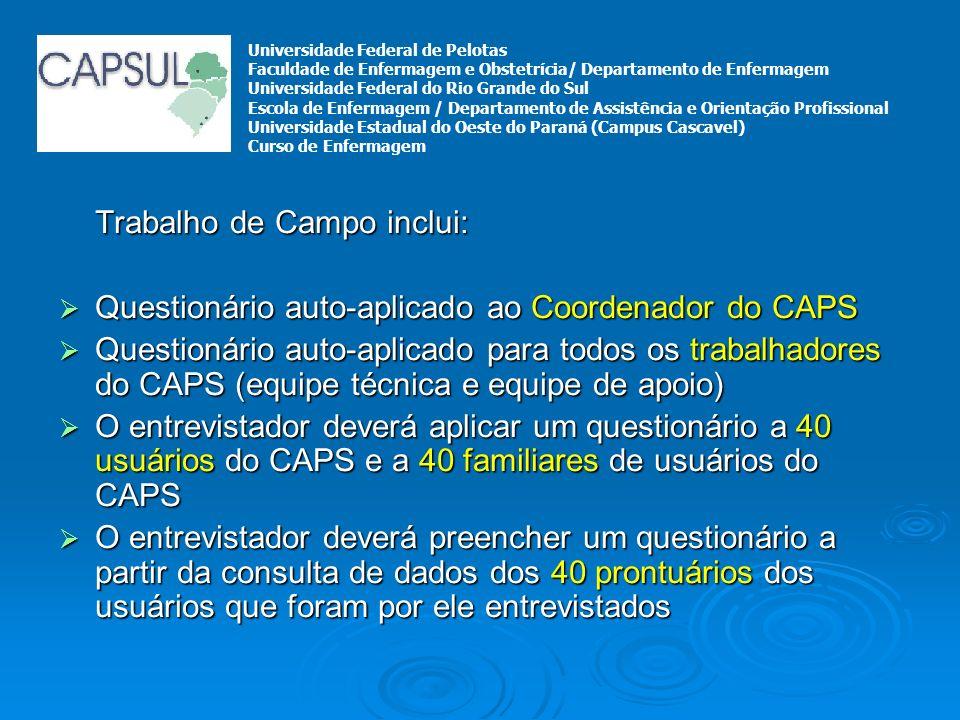 Trabalho de Campo inclui: Questionário auto-aplicado ao Coordenador do CAPS Questionário auto-aplicado ao Coordenador do CAPS Questionário auto-aplica