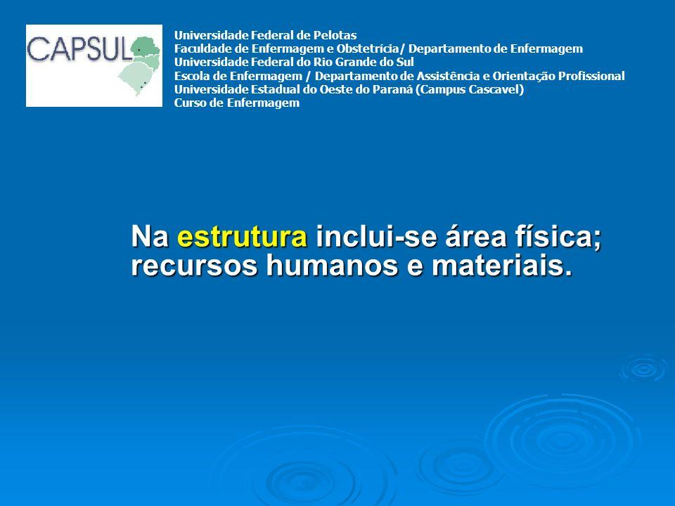 Na estrutura inclui-se área física; recursos humanos e materiais. Universidade Federal de Pelotas Faculdade de Enfermagem e Obstetrícia/ Departamento