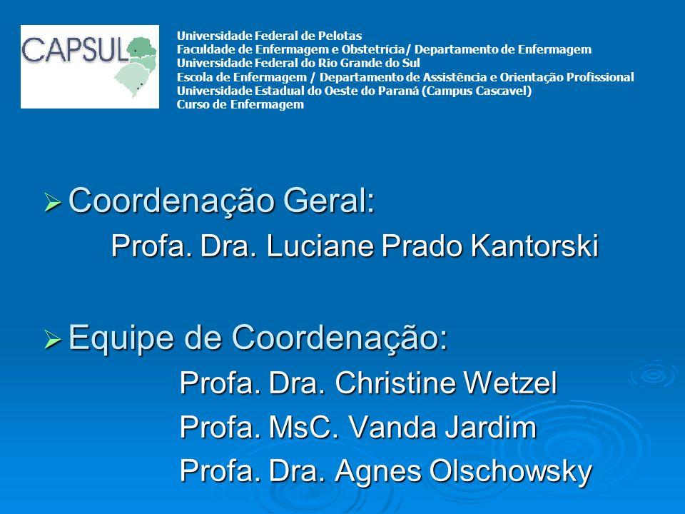 Coordenação Geral: Coordenação Geral: Profa. Dra. Luciane Prado Kantorski Equipe de Coordenação: Equipe de Coordenação: Profa. Dra. Christine Wetzel P