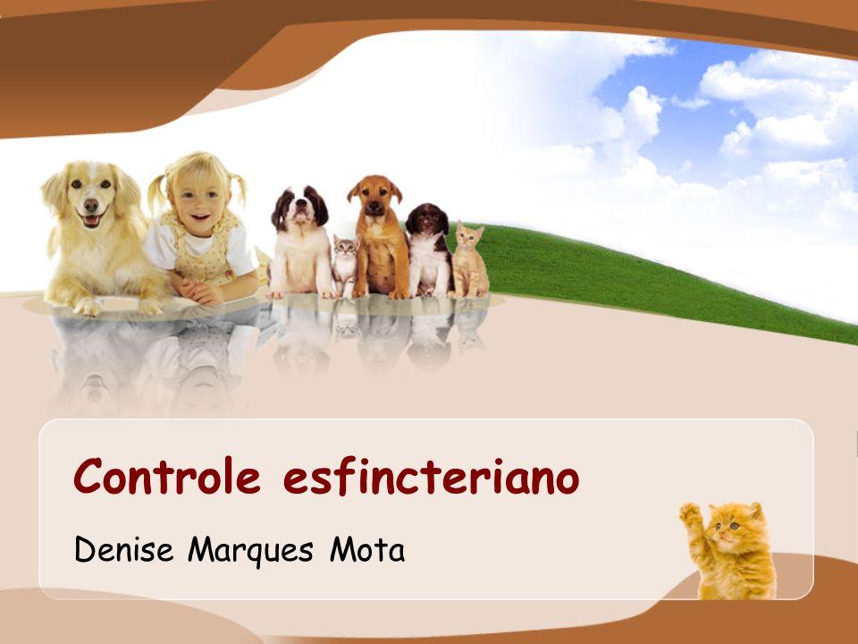 Controle esfincteriano Denise Marques Mota