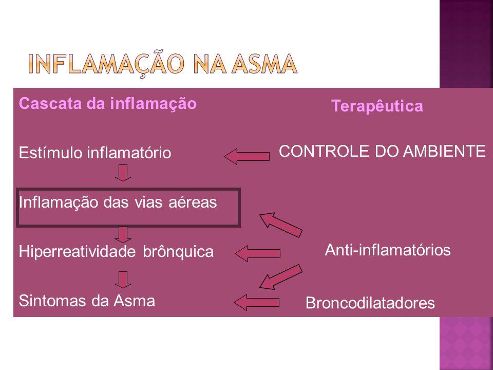 Cascata da inflamação Estímulo inflamatório Inflamação das vias aéreas Hiperreatividade brônquica Sintomas da Asma Terapêutica CONTROLE DO AMBIENTE An