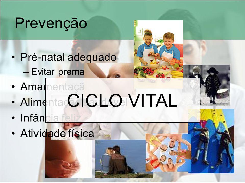 Prevenção Pré-natal adequado –Evitar prematuridade e baixo peso Amamentação Alimentação saudável Infância feliz Atividade física CICLO VITAL