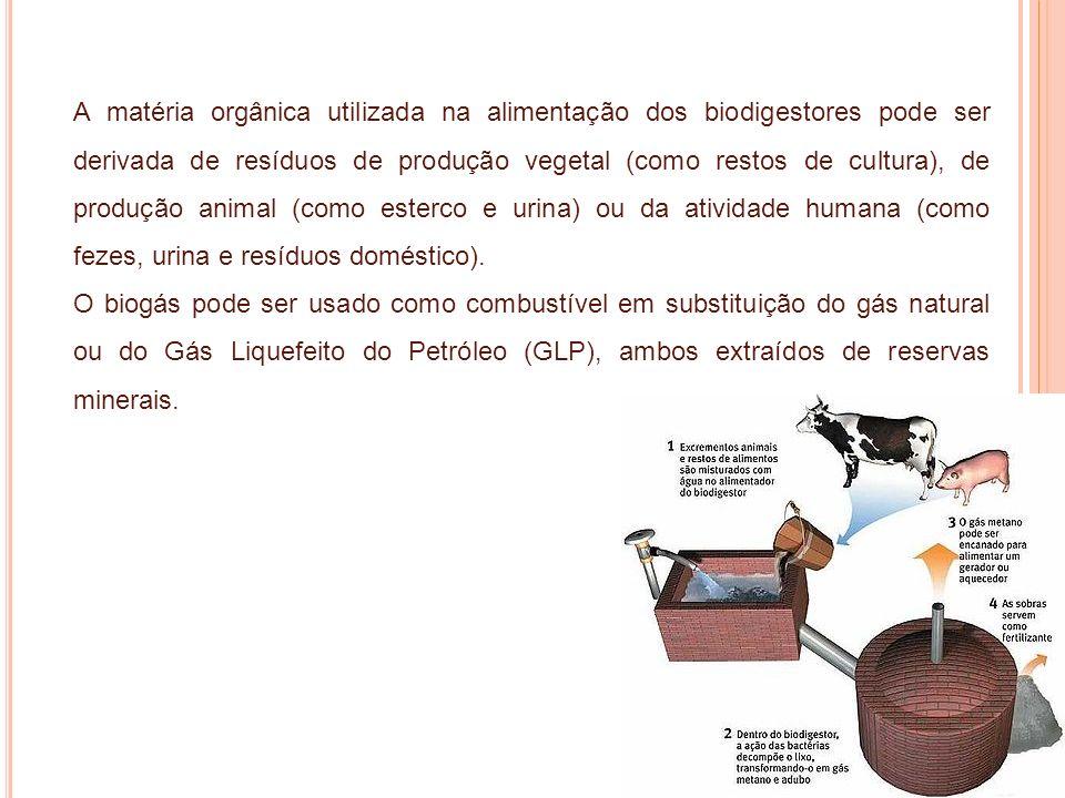 A matéria orgânica utilizada na alimentação dos biodigestores pode ser derivada de resíduos de produção vegetal (como restos de cultura), de produção