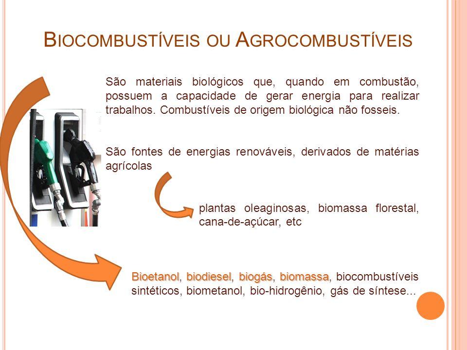 MicrorganismosMicrorganismos A utilização de microrganismos em biocombustíveis é baseada em uma tecnologia antiga, datada em épocas anteriores ao cristianismo, o processo fermentativo – produção de bebidas alcoólicas.