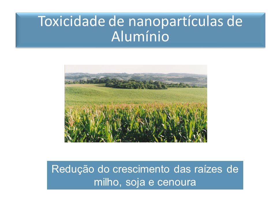 Redução do crescimento das raízes de milho, soja e cenoura Toxicidade de nanopartículas de Alumínio