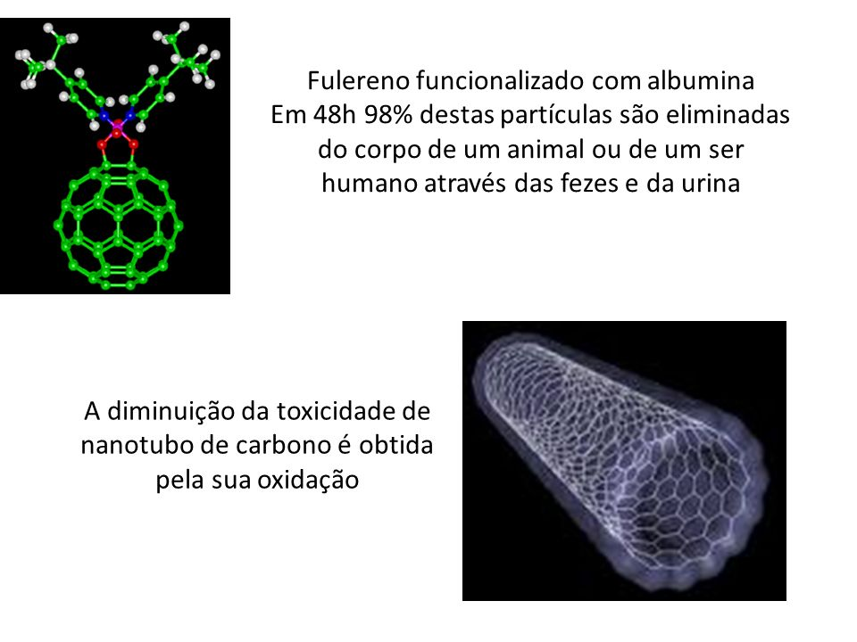 Fulereno funcionalizado com albumina Em 48h 98% destas partículas são eliminadas do corpo de um animal ou de um ser humano através das fezes e da urin