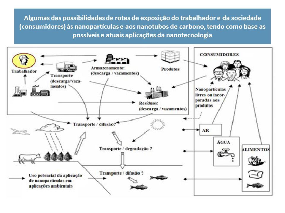 Algumas das possibilidades de rotas de exposição do trabalhador e da sociedade (consumidores) às nanopartículas e aos nanotubos de carbono, tendo como