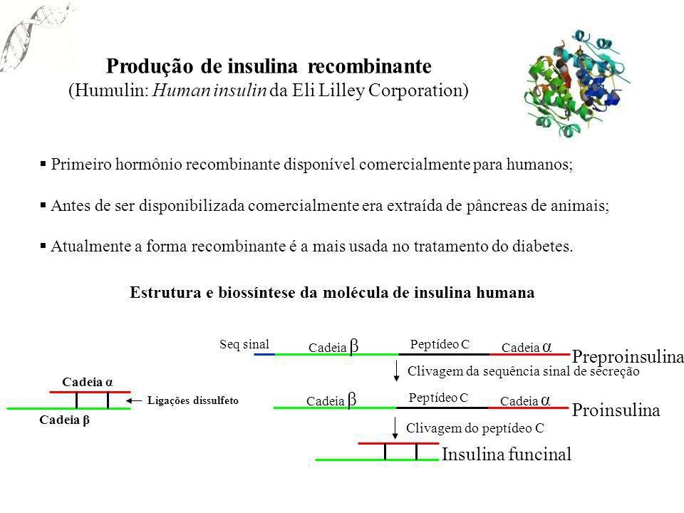 Primeiro hormônio recombinante disponível comercialmente para humanos; Antes de ser disponibilizada comercialmente era extraída de pâncreas de animais
