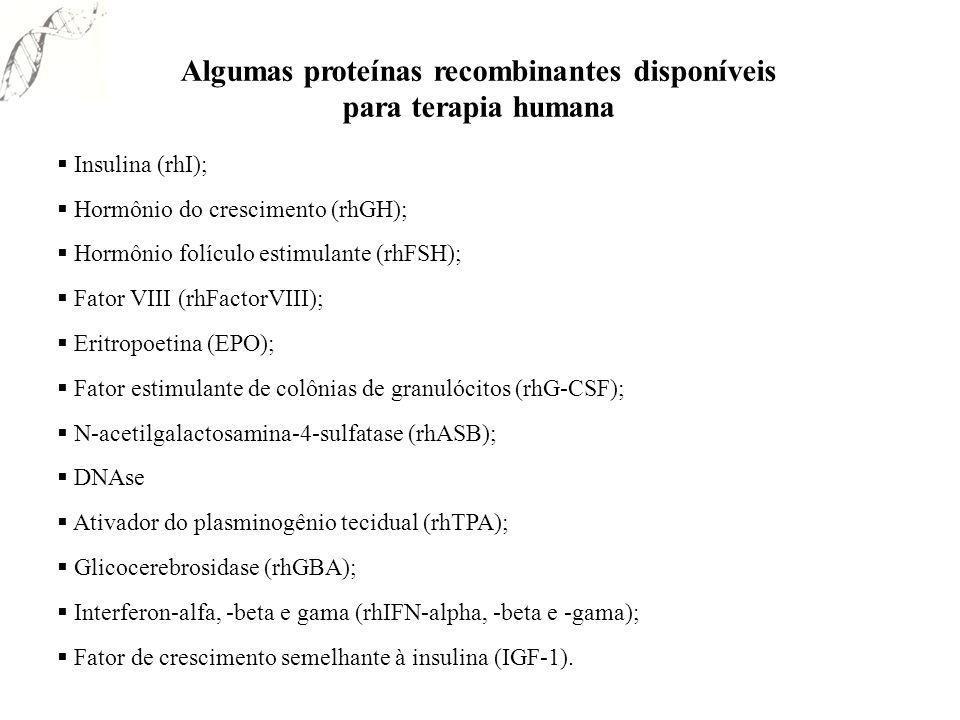 Algumas proteínas recombinantes disponíveis para terapia humana Insulina (rhI); Hormônio do crescimento (rhGH); Hormônio folículo estimulante (rhFSH);