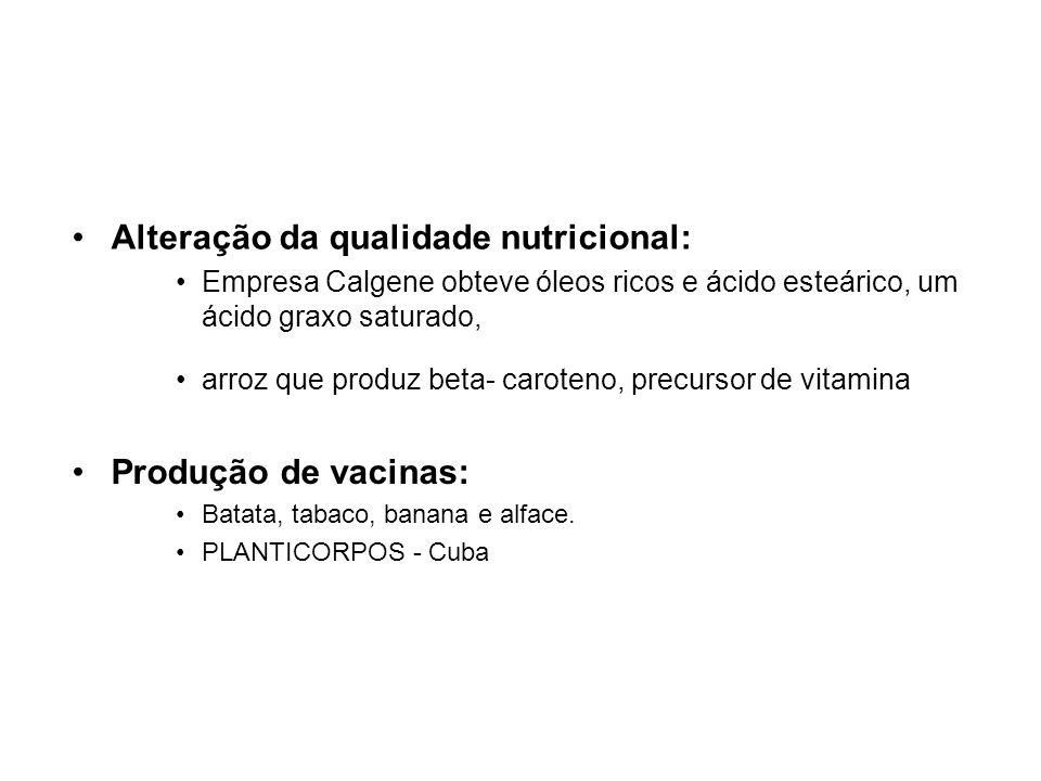 Alteração da qualidade nutricional: Empresa Calgene obteve óleos ricos e ácido esteárico, um ácido graxo saturado, arroz que produz beta- caroteno, precursor de vitamina Produção de vacinas: Batata, tabaco, banana e alface.