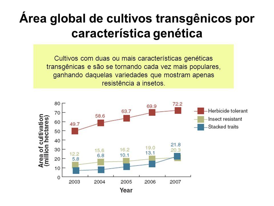 Área global de cultivos transgênicos por característica genética Cultivos com duas ou mais características genéticas transgênicas e são se tornando cada vez mais populares, ganhando daquelas variedades que mostram apenas resistência a insetos.