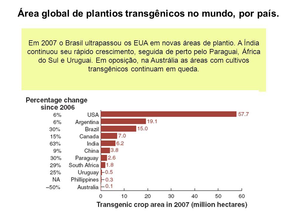 Em 2007 o Brasil ultrapassou os EUA em novas áreas de plantio.