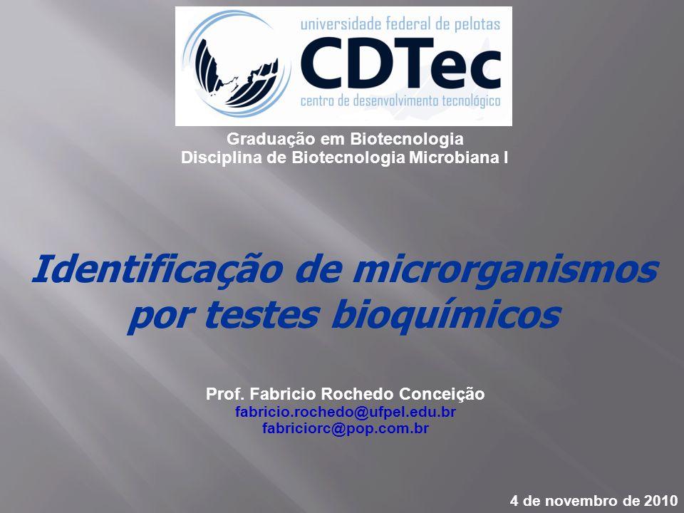 Identificação de microrganismos por testes bioquímicos Prof. Fabricio Rochedo Conceição fabricio.rochedo@ufpel.edu.br fabriciorc@pop.com.br 4 de novem
