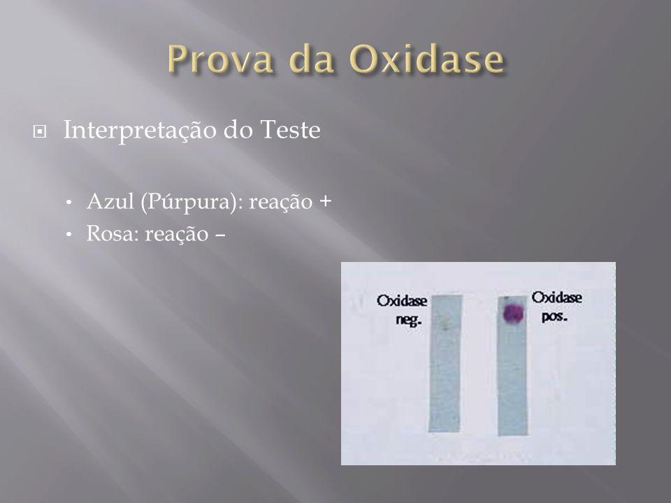 Interpretação do Teste Azul (Púrpura): reação + Rosa: reação –