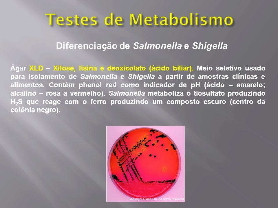 Diferenciação de Salmonella e Shigella Ágar XLD – Xilose, lisina e deoxicolato (ácido biliar). Meio seletivo usado para isolamento de Salmonella e Shi