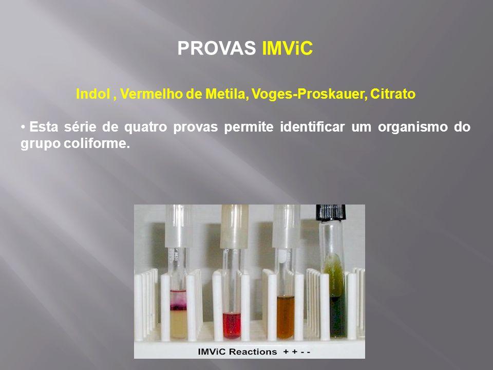 PROVAS IMViC Indol, Vermelho de Metila, Voges-Proskauer, Citrato Esta série de quatro provas permite identificar um organismo do grupo coliforme.